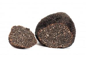 truffes-deposit