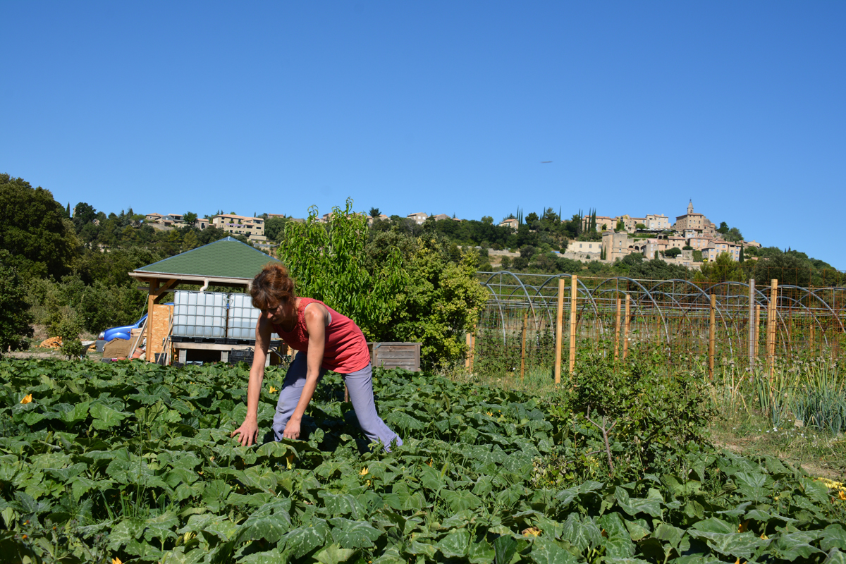 Ventoux saveurs atelier jardinage bio et d couverte d un for Atelier du jardin d acclimatation