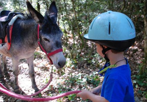 09-22 Les jardins biodynamiques - enfant-âne