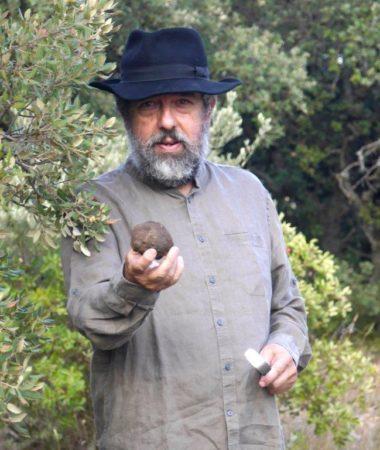 10-26 Chiron truffes couleur
